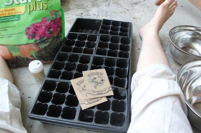 seeding3