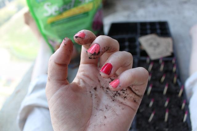 seeding5